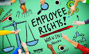 top 20 employment law facts you need to know startup donut top 20 employment law facts you need to know