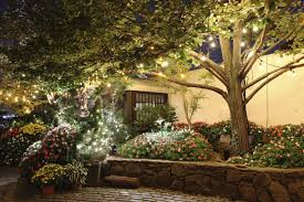 if you have a tree or two in your garden you can hang strings of amazing garden lighting flower