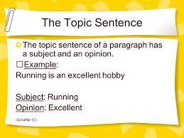 writing service   english essay topic sentence bitsat   english sentence topic essay