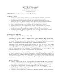 objectives of customer service resume