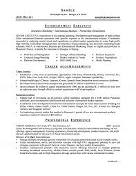 executive resume entertainment executive resume