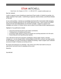 Leading Professional Team Lead Cover Letter Examples  amp  Resources