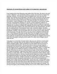 textual analysis essay example source