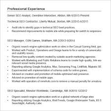 seo resume templets –   free samples   examples   formatseo resume pdf