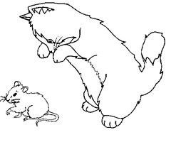 """Résultat de recherche d'images pour """"souris"""""""