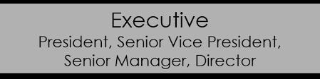 Executive Resume Writing Service   Resumes by Joyce