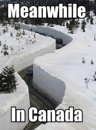 Finniest-Snow-Memes-Ever2.jpg via Relatably.com