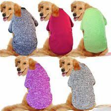 Лабрадор ретривер <b>собака свитера</b> - огромный выбор по ...