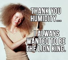 funny-girl-frizzy-hair-quote.jpg via Relatably.com