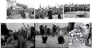 Image result for cải cách ruộng đất 1954
