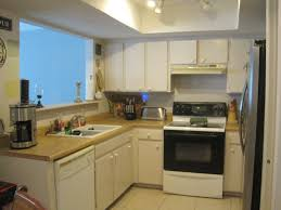 Small Picture Small Kitchen Ideas L Shaped House Design Ideas
