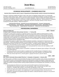 resume examples executive director non profit cipanewsletter executive director resume getessay biz