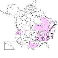 Comprehensive Report Species - Rosa micrantha