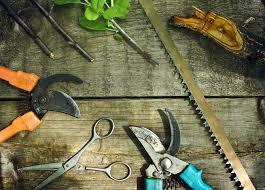 <b>Инструменты для обрезки</b> деревьев и кустарников: как выбрать