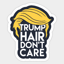 Trump <b>Hair Don't Care</b>: Donald <b>Humor</b> - Donald Trump - Sticker ...
