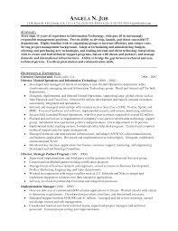 car sman resume resume badak it director resume sample
