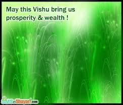 Fireworks for Vishu