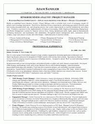 risk analyst resume indeed cipanewsletter data analyst resume template good summary and work experience