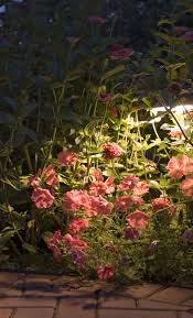 outdoor lighting ensures the safety of your steps through you charlotte garden amazing garden lighting flower