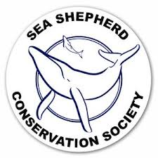 Please click to visit Sea Shepherd website
