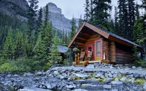 Image result for cabins in the woods