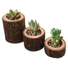 Винтажный деревянный подсвечник на <b>ветке</b> дерева ...