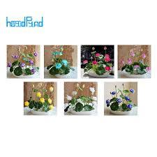<b>10 pcs</b>/<b>pack Bowl Lotus</b> Seed <b>Hydroponic</b> Plants Aquatic Plants ...
