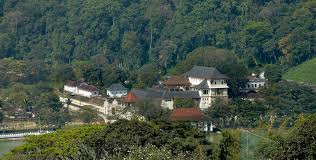 Image result for sri wickrama rajasinghe