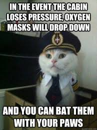 Captain-Kitty-Meme-On-Some-Misguided-Airplane-Oxygen-Mask-Instructions.jpg via Relatably.com