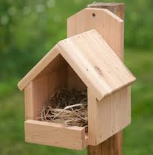 Nighttime Shelter for Winter Birds   Bird Roost Plan Two   Gone to    Nighttime Shelter for Winter Birds   Bird Roost Plan Two   Gone to the birds   Pinterest   Shelters  Birds and Winter