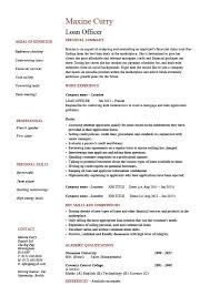 Loan officer resume  example  sample  banks  mortgage  equity  statement Dayjob