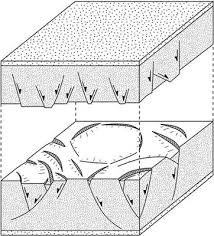 Kinematics of Polygonal Fault Systems: Observations ... - Frontiers