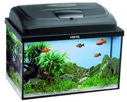Aquael <b>Aquarium Set</b> Classic <b>Box</b> 60 LT :: <b>Аквариумы</b> :: Для рыбок ...