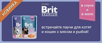<b>Brit</b> Новинка для кошек — <b>паучи</b> в соусе и желе!