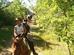 Promenades à cheval daqns le quercy»