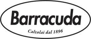 Картинки по запросу logo barracuda