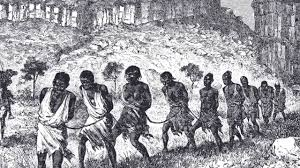 essay about african slave trade  african slave trade essays