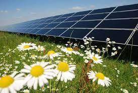 Resultat d'imatges de fotovoltaica politica