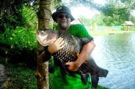 xobbi  Факты о рыбалке