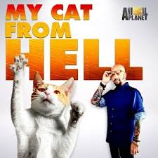 Image result for my cat from hell