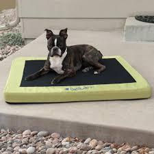 amazoncom  kh manufacturing comfy n' dry indooroutdoor pet bed