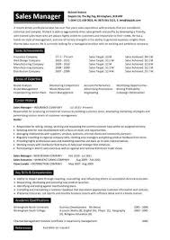 images about CV     s and resumes on Pinterest sales manager resume