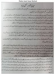 media essay in urdu  media essay in urdu