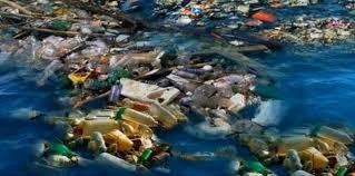 """Résultat de recherche d'images pour """"Conférence : plastique méditerranée, au delà du constat, quelles solutions ?"""""""