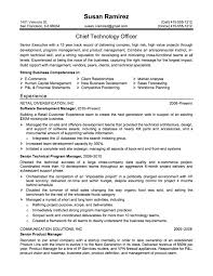 example of a career summary or a career profile on a cv resume  resume examples on this website were created professional resume