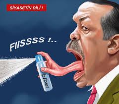 Image result for cartoons of erdogan + images