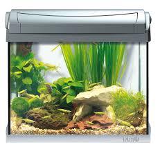 Купить <b>Tetra</b> AquaArt LED Goldfish <b>аквариумный комплекс</b> 20 л с ...