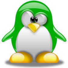 """Résultat de recherche d'images pour """"pingouin vert"""""""