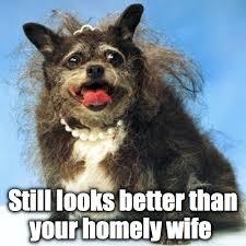 Ugliest Dog Memes via Relatably.com