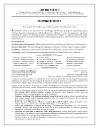principal resume samples resume templates sample resume for a job